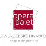 logo severoceske divadlo